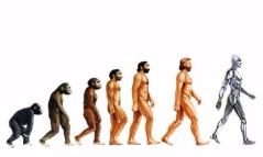 evolución hombre